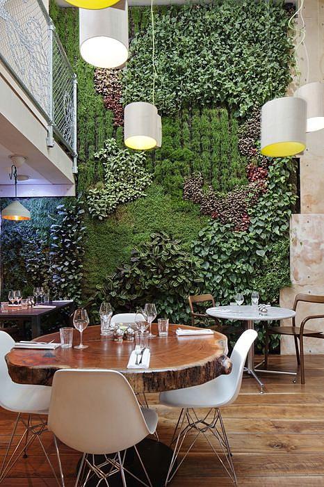 Вертикальное озеленение в интерьере офиса, кафе или квартиры станет оптимальным выбором, если вы привыкли подходить к созданию дизайна творчески.