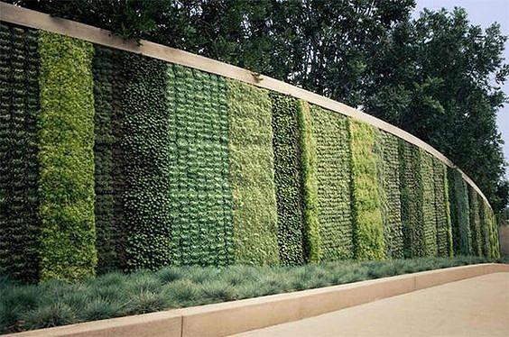 Искусственная фитостена из матов (фитомодуей): благодаря модульным конструкциям для вертикального искусственного озеленения можно достичь любого визуального эффекта.