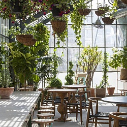roy-choi-greenhouse-ace-hotel-Downtown-la-4.jpg