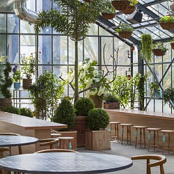 roy-choi-greenhouse-ace-hotel-Downtown-la-5.jpg